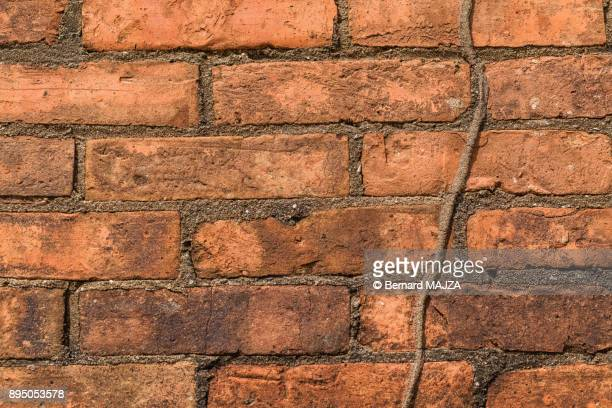 Some Bricks in the wall