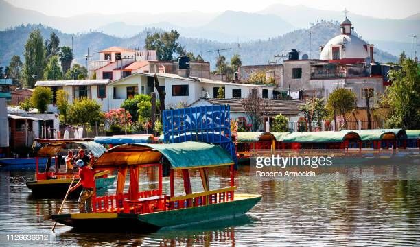 some trajineras along a canal in the xochimilco lagoon in the south of mexico city - mexico city stock pictures, royalty-free photos & images