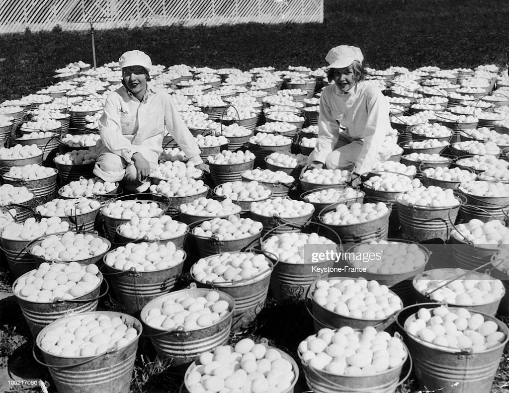 Eggs Consignment For Eastern In The Usa In 1934 : News Photo