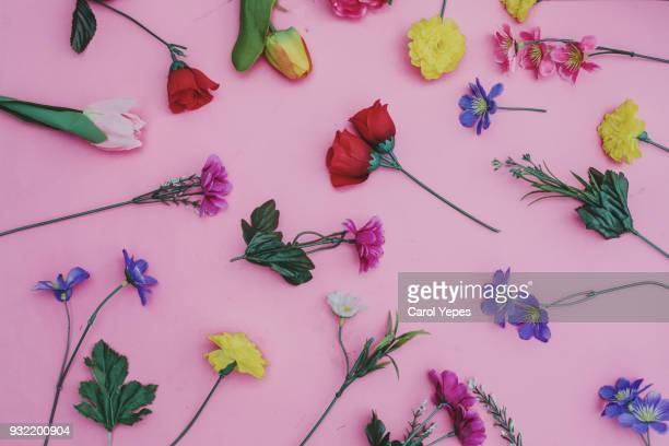 some flowers in pink background.top view