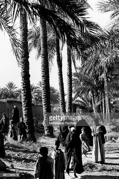 Some Iraqi children walking among the palm trees and the mud houses of the village Behind them some women carrying pitchers Ananeh December 1956