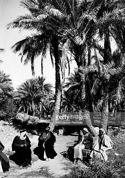 Some Iraqi wearing the keffiyeh sitting under palm trees Iraq December 1956