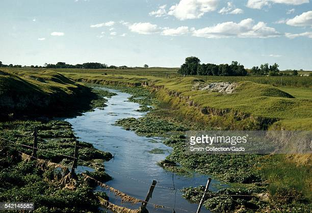 Some mosquitoes enjoy irrigated regions along with slowmoving streams 1975 Weedchoked irrigation ditches result in sluggish streams Such environments...