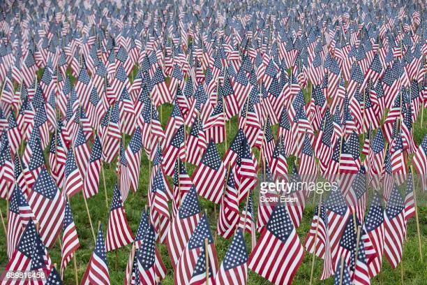 Some of the 37,252 flags placed on the Boston Common to honor the number of lost Massachusetts military members on May 29, 2017 in Boston,...