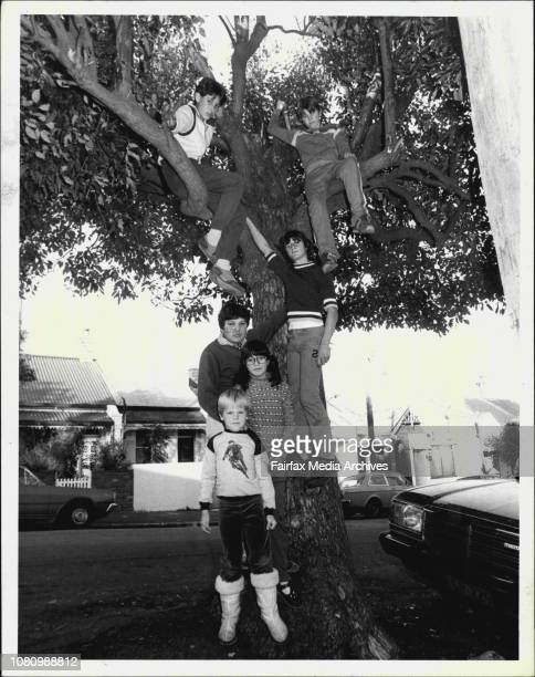 Some of the children at the tree in Metropolitan St Marrickville where the local council removed a tree hut which had been a favorite retrest for the...