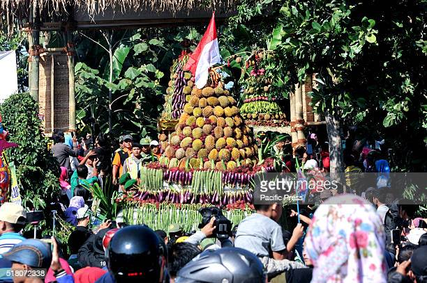 Some people do not like the smell and taste of durian but not in Asia especially Indonesia the fruit is called the king of fruits is much liked by...
