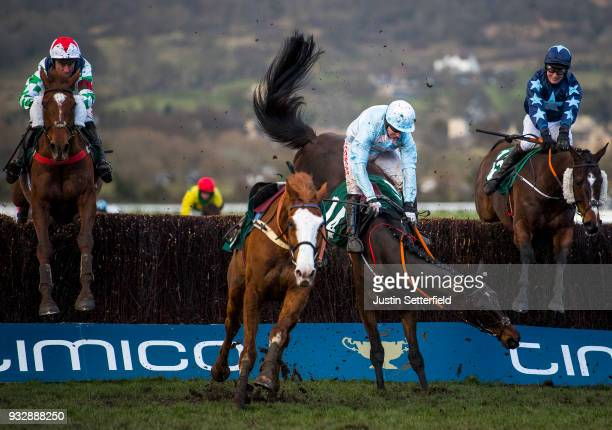 Some Plan riden by Noel Fehily falls at the last during the Johnny Henderson Grand Annual Challenge Cup Handicap Chase at the Cheltenham Festival...