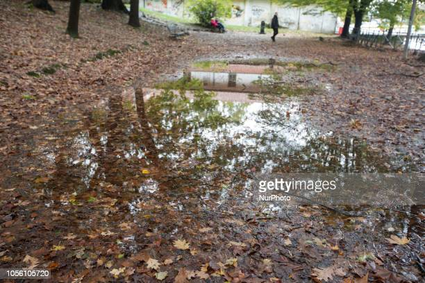 Some puddles with colorful leaves Impressions of the Fall in the capital of Piedmont Turin in Northern Italy on 1st November 2018