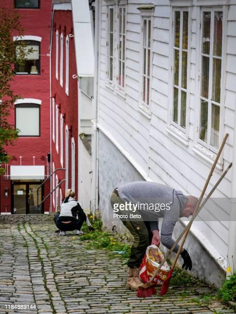 noorwegen-gemeenschap-vissers kwartier-burgerschap-herfst-hd - noord europa stockfoto's en -beelden