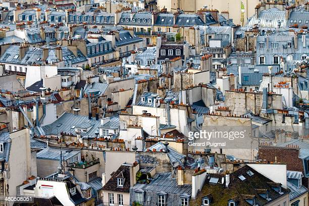 Some roofs of old flats in Paris