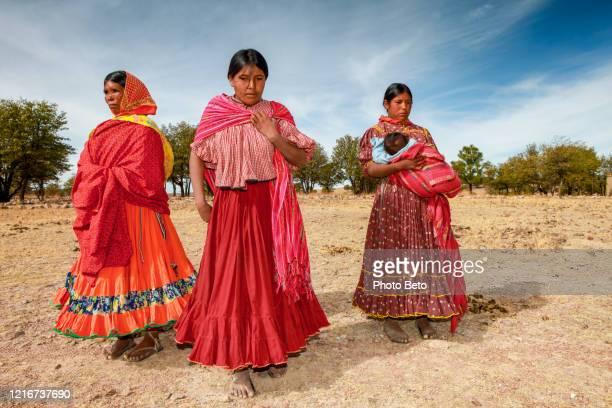 algunas mujeres de la etnia tarahumara caminan por un árido campo de maíz en el norte de méxico - tarahumara fotografías e imágenes de stock