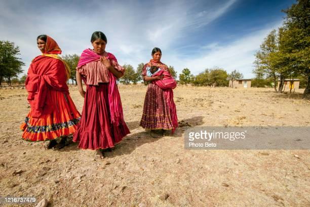algunas mujeres de la etnia tarahumara caminan por un árido campo de maíz en el norte de méxico - cultura indígena fotografías e imágenes de stock