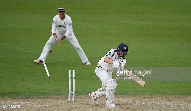 Somerset fielder Marcus Trescothick celebrates as Yorkshire batsman Gary Ballance is bowled by Tim Groenewald during day two of the Division One...