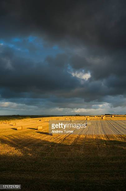 CONTENT] Sometimes a pretty ordinary scene can be transformed by the light Here I captured a golden field of hay bales in St Merryn just as the sun...