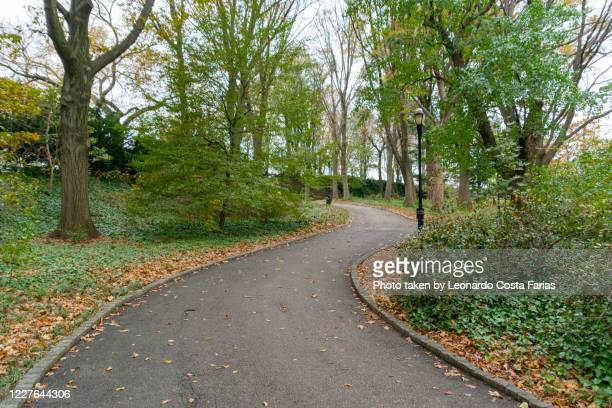 somewhere in central park - leonardo costa farias stock pictures, royalty-free photos & images