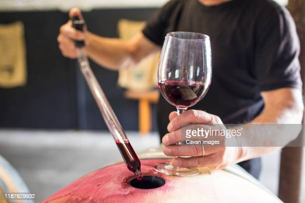sommelier extracts wine from a barrel using a pipette - fermenting stock pictures, royalty-free photos & images