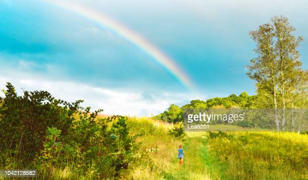 somwhere - midwest usa stock pictures, royalty-free photos & images