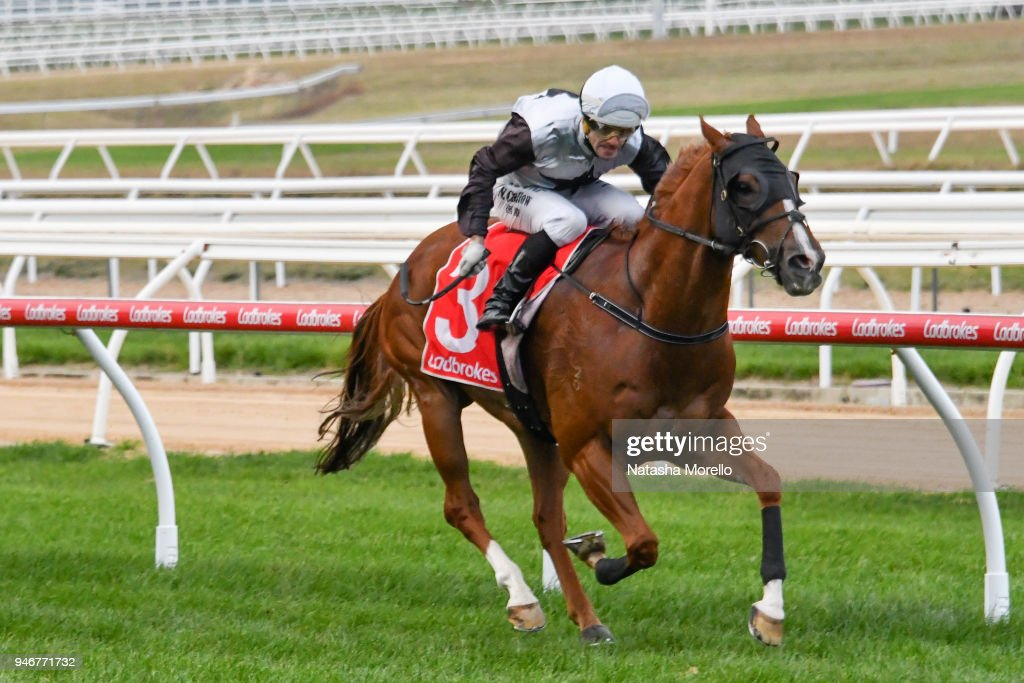 Son of Sami ridden by Noel Callow wins the Ladbrokes Cash Out BM58 Handicap at Mornington Racecourse on April 16, 2018 in Mornington, Australia.