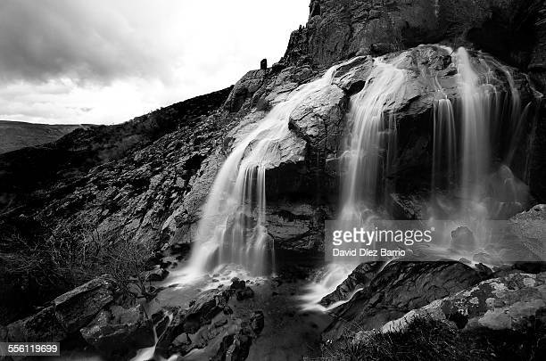 sonata of nature - black and white instant print stock pictures, royalty-free photos & images