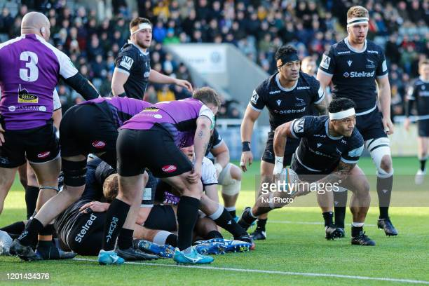 Sonatane Takulua of Newcastle Falcons looks to get his backs moving during the Greene King IPA Championship match between Newcastle Falcons and...