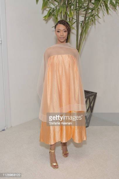 Sonequa MartinGreen attends The 21st CDGA at The Beverly Hilton Hotel on February 19 2019 in Beverly Hills California