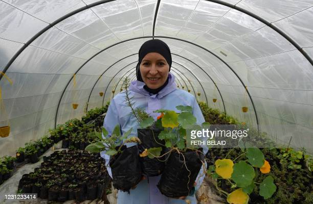Sonia Ibidhi, a 42-year-old journalist turned to organic farming, poses with pots of nasturtiums in the greenhouse of her small farm where she...
