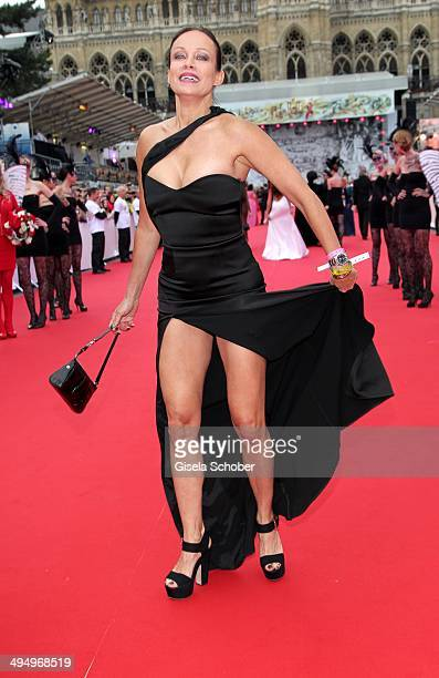 Sonja Kirchberger attends the Life Ball 2014 at City Hall on May 31 2014 in Vienna Austria