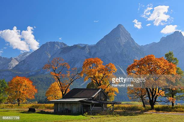 Sonnenspitz Mountain and colorful maple