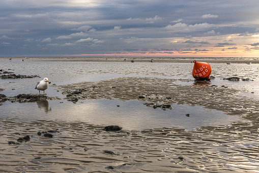 Sonnenuntergang am Strand von Sankt Peter Ording 898670166