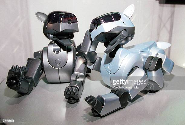 Sony began accepting orders for the new Aibo a robot modeled after a lion cub through Internet sales and order counters at major department stores...