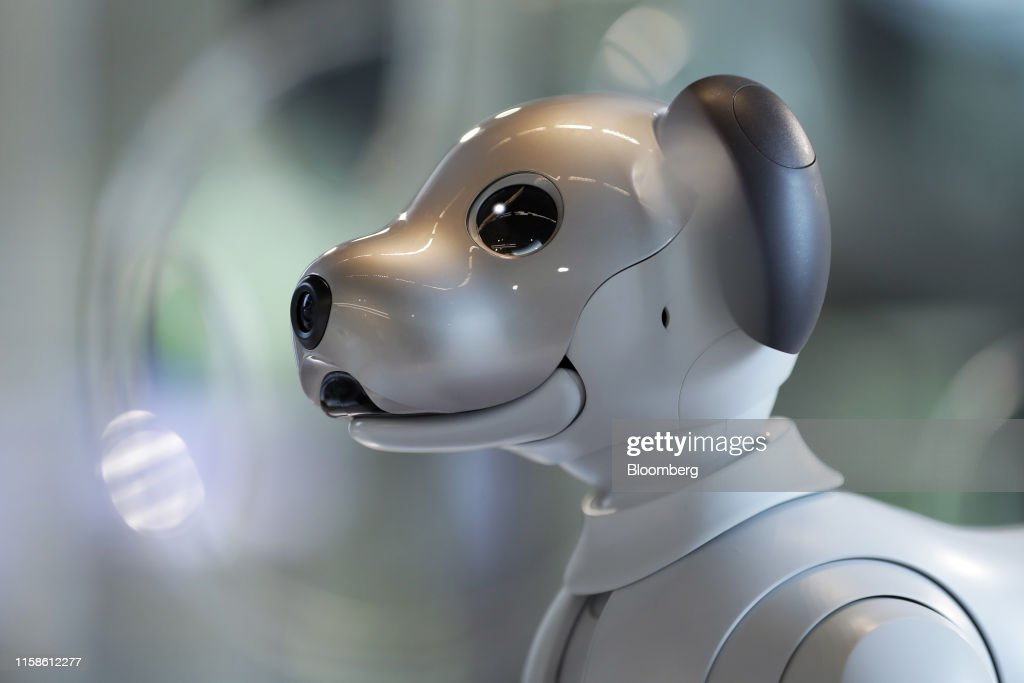 A Sony Corp  'Aibo' robotic dog sits on display at the