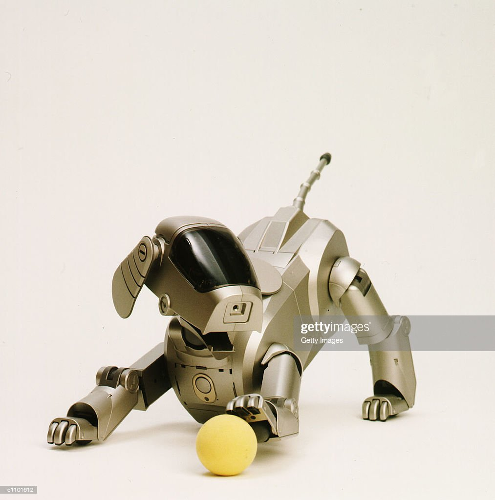 Sony Corporation Announces The Launch Of The Dog Shaped Autonomous Robot Called Aibo That Can Expr : Photo d'actualité