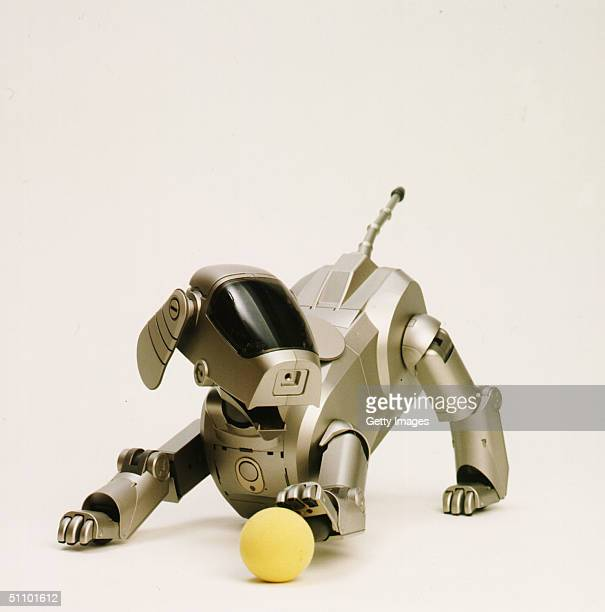"Sony Corporation Announces The Launch Of The Dog-Shaped Autonomous Robot Called ""Aibo"" That Can Express Various Emotions And Responsed To External..."