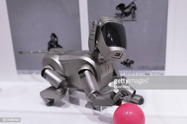 Sony Corp's Aibo ERS111 robotic dog sits on display at the 'It's a Sony' exhibition in Tokyo Japan on Saturday Nov 12 2016 The exhibition officially...