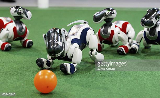 Sony's fourleg robots Aibo play football during the fourlegs league of robot football during the RoboCup 2005 on July 15 2005 in Osaka Japan The...