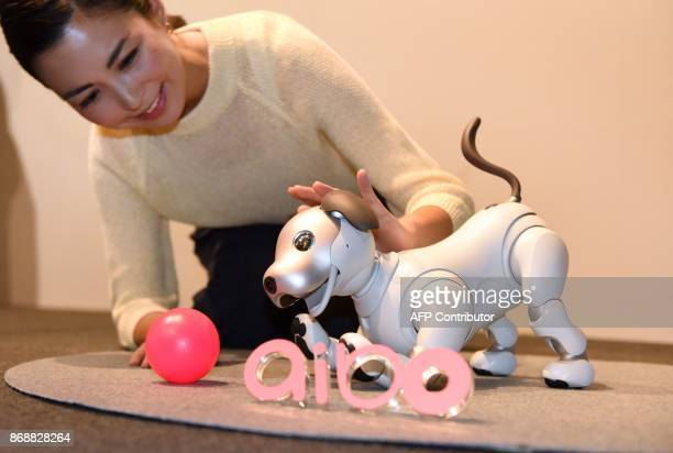 Sony's latest entertainment robot 'aibo' is displayed during a press preview at the company's headquarters in Tokyo on November 1 2017 Japanese...