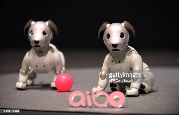 Sony's latest entertainment robots 'aibo' are displayed during a press preview at the company's headquarters in Tokyo on November 1 2017 Japanese...