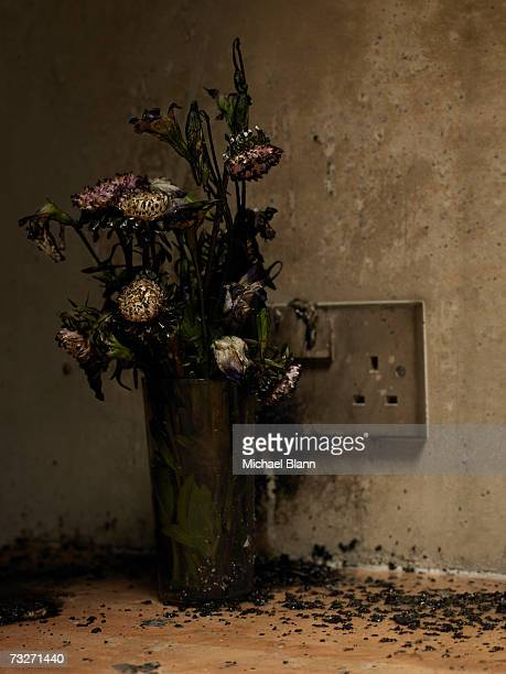 soot-covered electrical outlet and burnt flowers - すす ストックフォトと画像