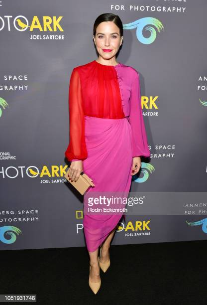 Sophia Bush attends the Annenberg Space For Photography's National Geographic Photo Ark Exhibit at Annenberg Space For Photography on October 11 2018...