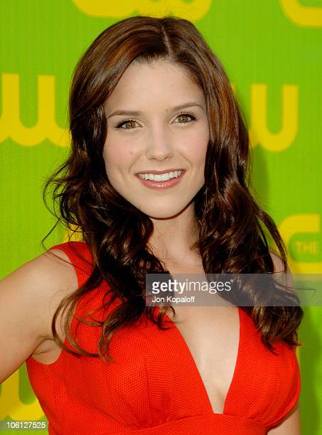 Sophia Bush during The CW Launch Party Arrivals at WB Main Lot in Burbank California United States