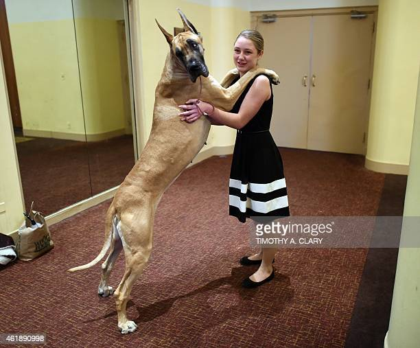 Sophia Rogers from Columbus New Jersey and Great Dane 'Joy' attend the 139th Annual Westminster Kennel Club Dog Show press conference on January 21...