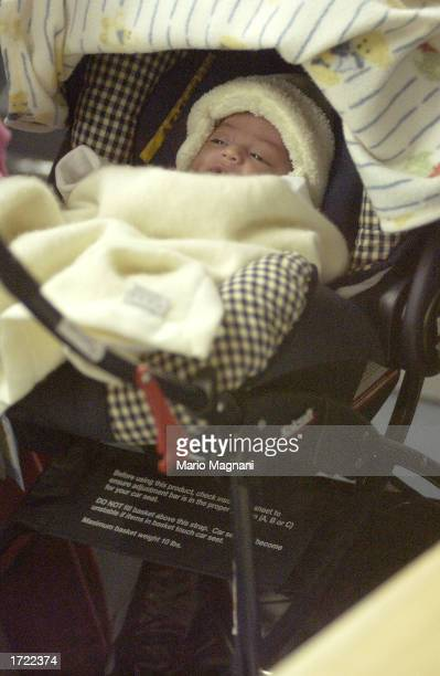Sophia Rosalinda Bratt the infant daughter of actors Benjamin Bratt and Talisa Soto lies in a baby carriage as her parents shop December 19 2002 in...