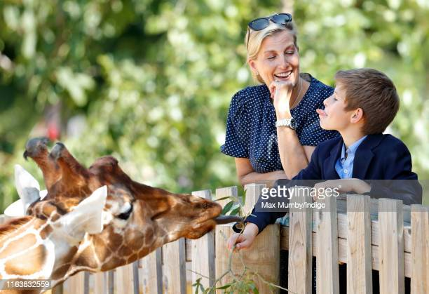 Sophie, Countess of Wessex and James, Viscount Severn feed a giraffe as they visit The Wild Place Project at Bristol Zoo on July 23, 2019 in Bristol,...