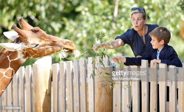 Sophie Countess of Wessex and James Viscount Severn feed a giraffe as they visit The Wild Place Project at Bristol Zoo on July 23 2019 in Bristol...