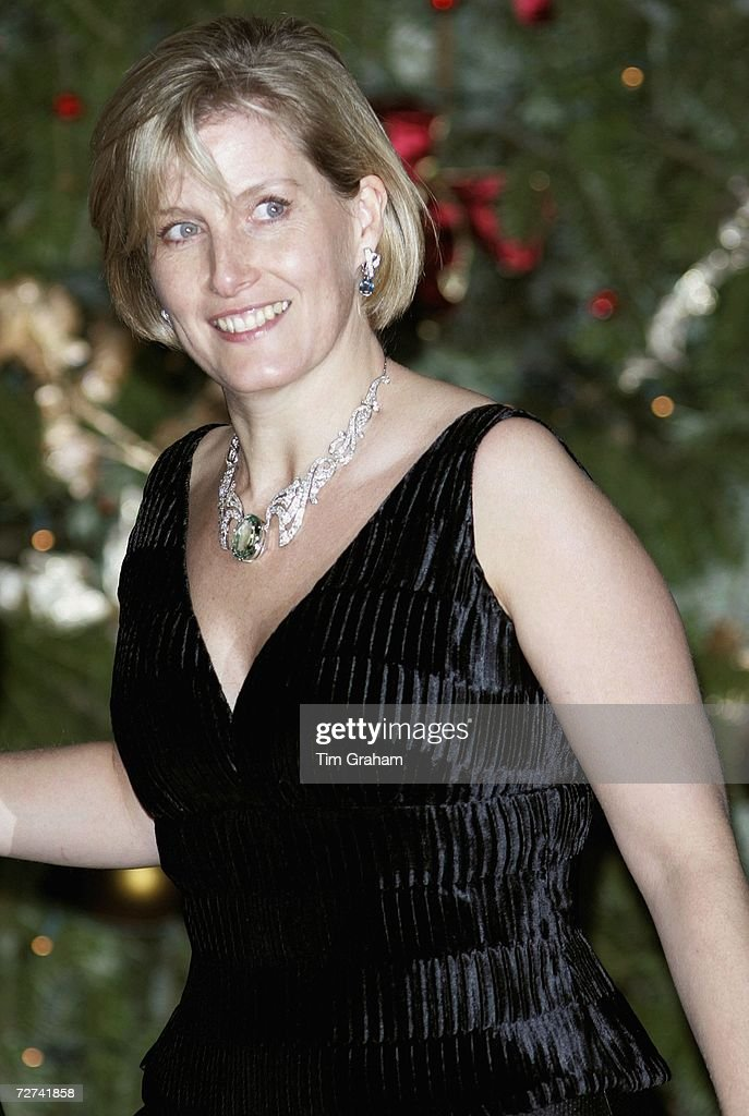 Countess of Wessex at Ritz Party : News Photo