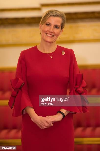 Sophie Countess of Wessex attends a reception to celebrate frontline nursing in the UK at Buckingham Palace on March 14 2018 in London England