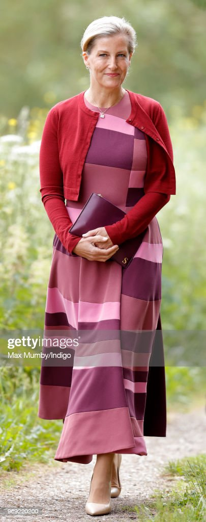 Sophie, Countess of Wessex attends a service of dedication for a new memorial to commemorate the service of Professional and Voluntary Aid Detachment (VAD) Nurses during the First and Second World Wars at The National Memorial Arboretum on June 4, 2018 in Stafford, England.