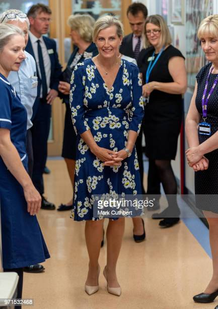Sophie Countess of Wessex attends a charity reception and dinner at Harewood House on June 11 2018 in Leeds England