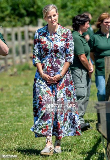 Sophie Countess of Wessex during a visit to Remus Memorial Horse Sanctuary in celebration of their 35th Anniversary at Remus Memorial Horse Sanctuary...
