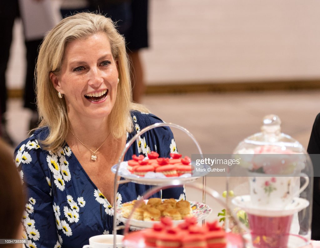 sophie-countess-of-wessex-has-afternoon-tea-with-employees-during-a-picture-id1034735358